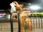 Une latina ivre se fout à poil en pleine rue